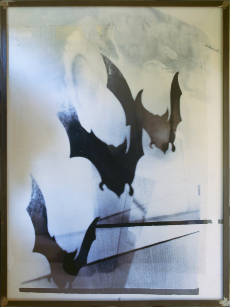 The Attack of the Bats in Max Ernst's Birthplace, Walter Dahn