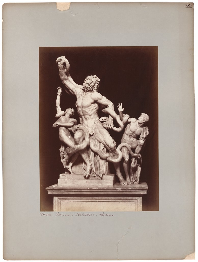 The Laocoon in the Vatican Museum, Adolphe Braun