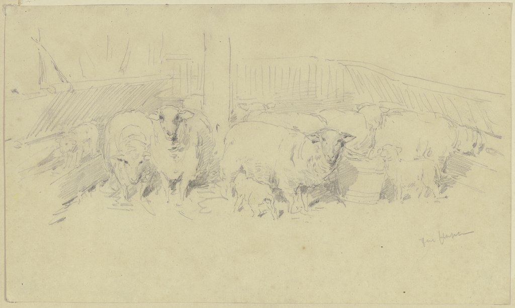 A sheepfold, Jacob Happ
