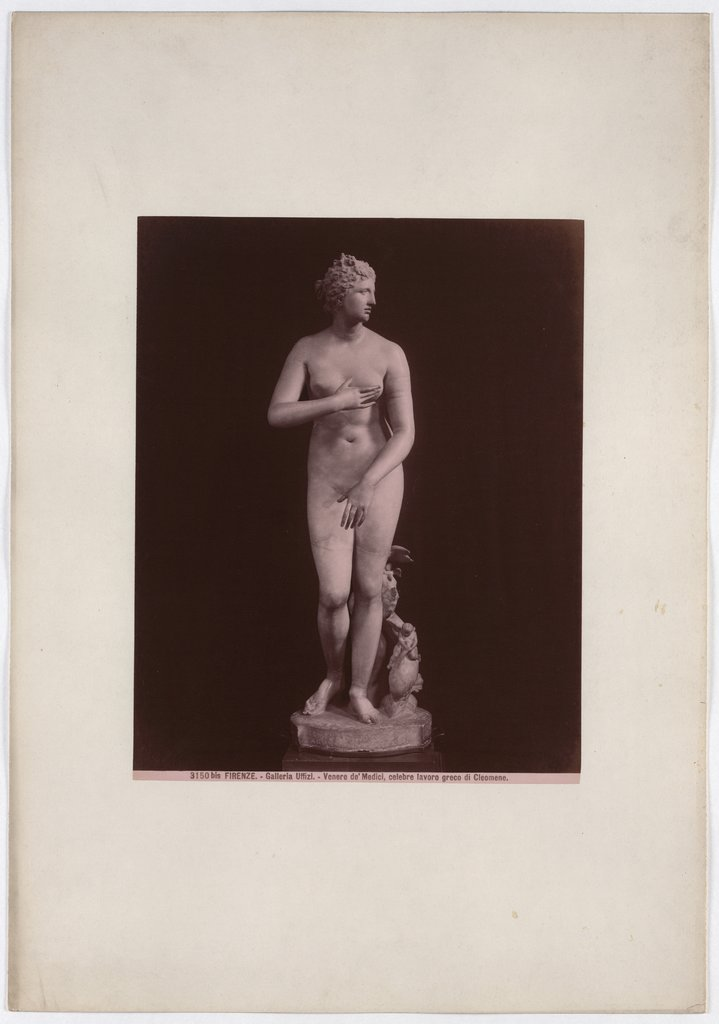 Florence: Venus de'Medici, famous Greek work by Cleomene, Uffizi Gallery, No. 3150 bis, Giacomo Brogi   attributed
