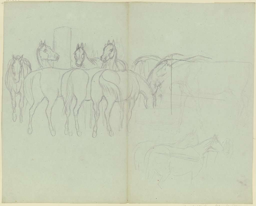 Herd of horses, grazing, Ferdinand Fellner