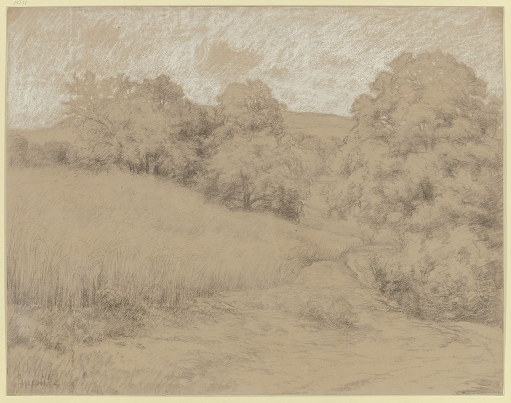 Cornfield at the forest, Karl Peter Burnitz