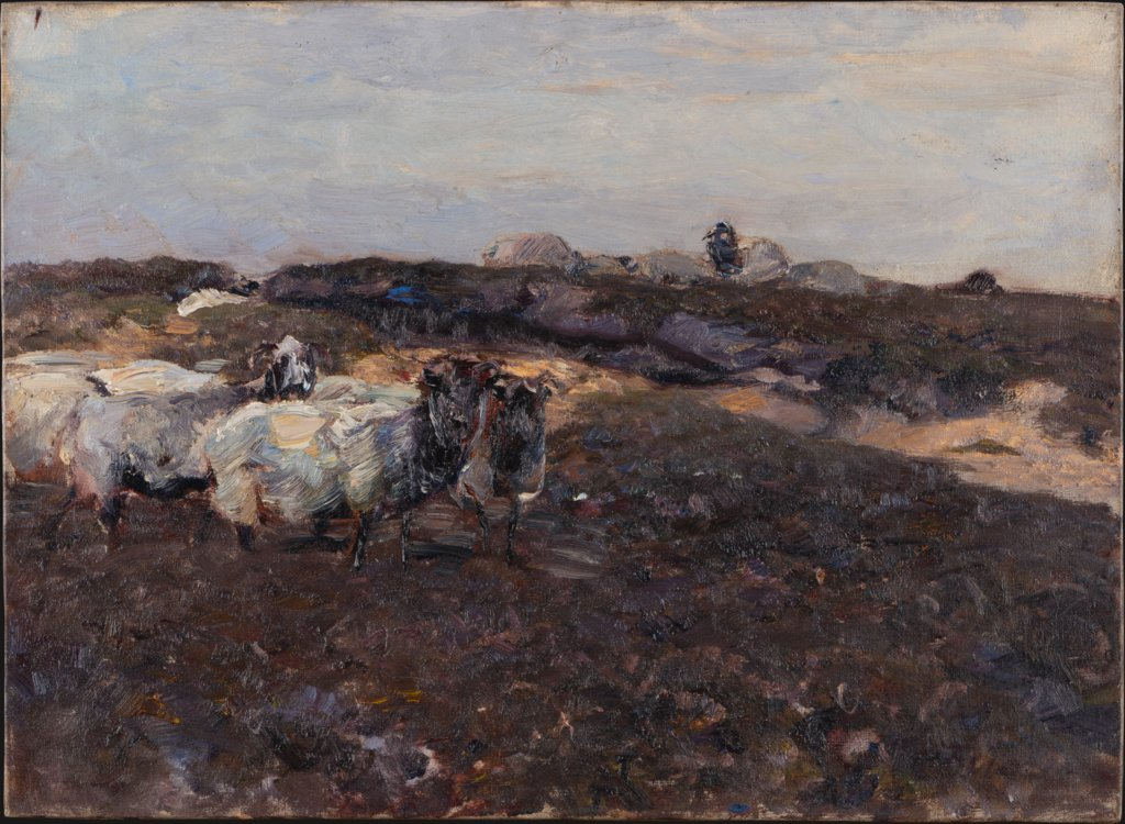 Sheeps in Moorland, Heinrich von Zügel
