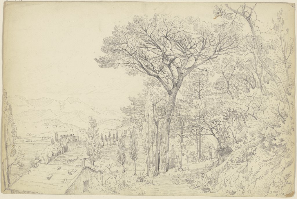 Pines on the Riviera, Carl Morgenstern