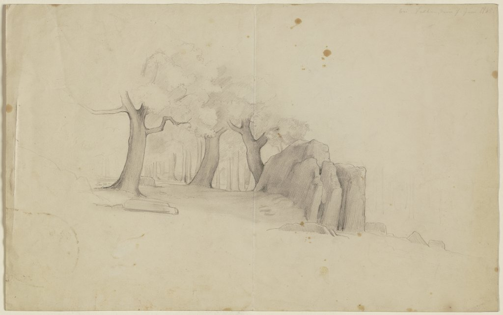 Trees around a rock, Victor Müller