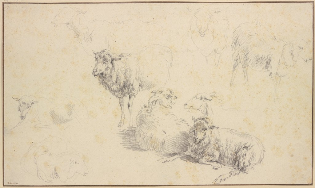 Nine sheep, Nicolaes Berchem