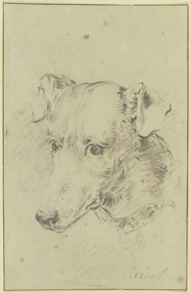 Dog's head to the left, Philip Reinagle