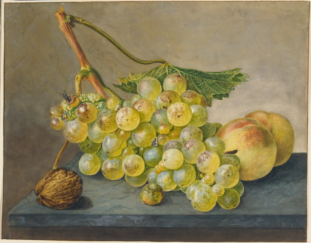 A Bunch of Grapes, a Nut and Two Peaches, Wybrand Hendriks