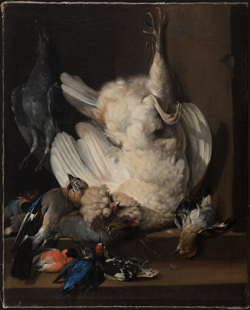 Still Life with Dead Poultry, Johann Heinrich Roos