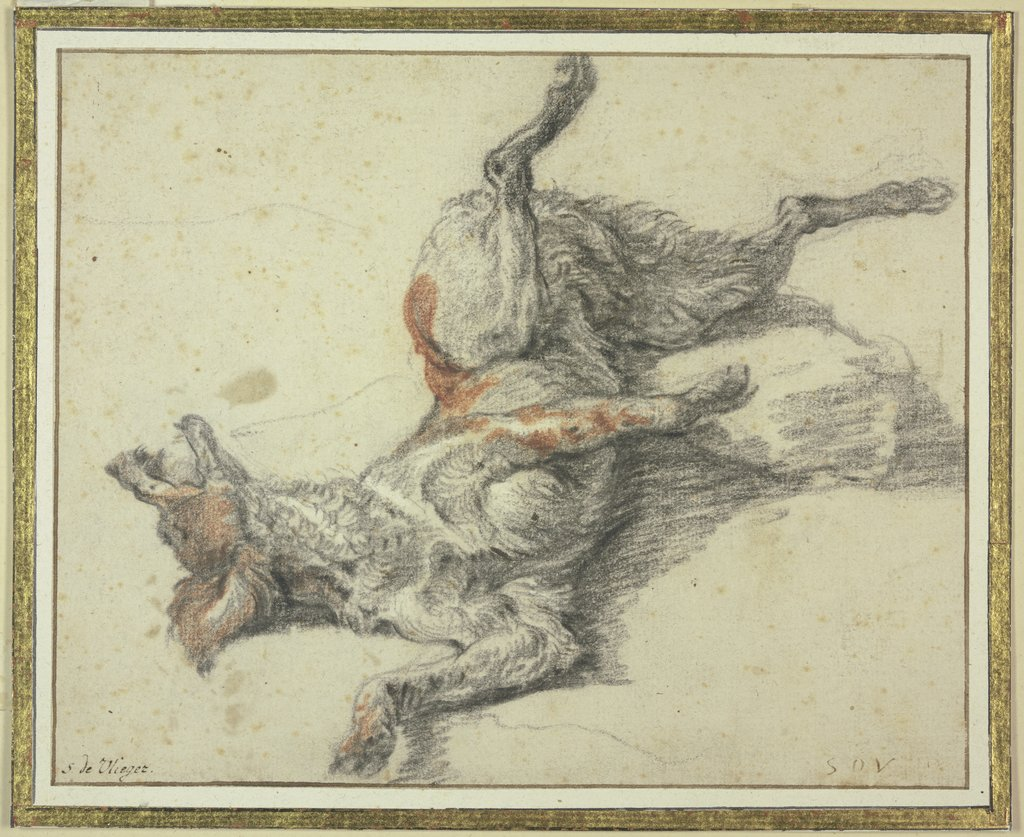 Wounded dog, Simon de Vlieger   ?