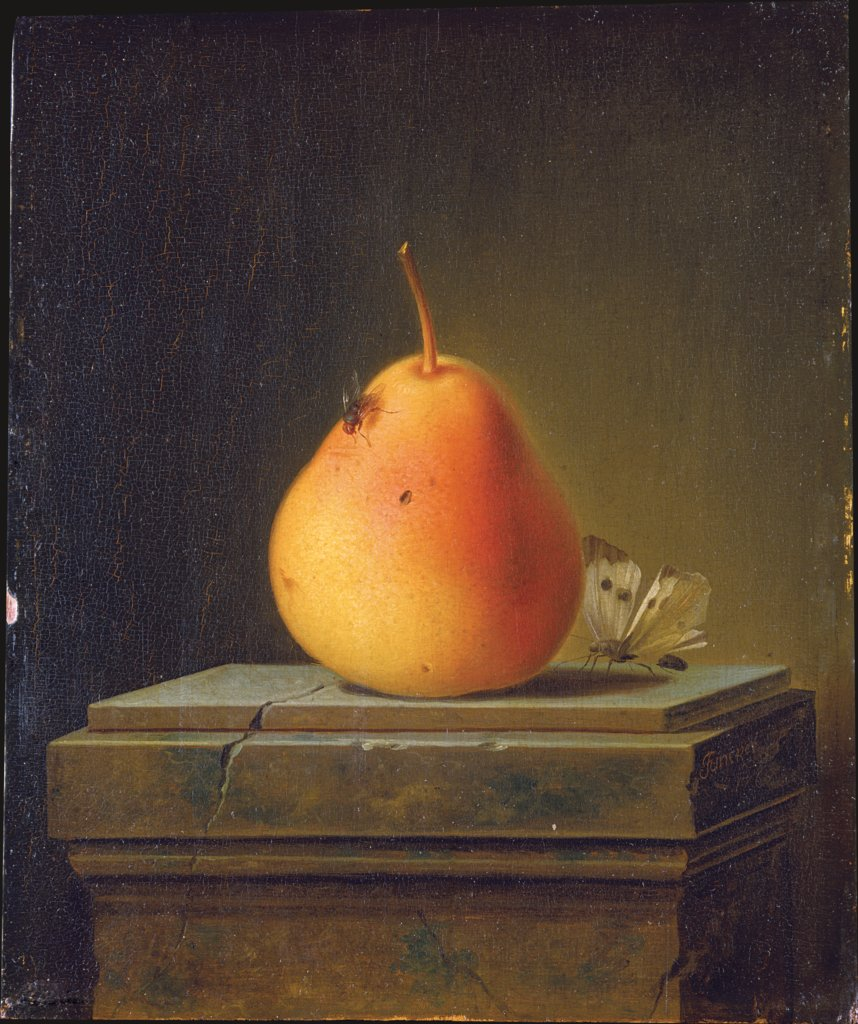 Still Life with Pear and Insects, Justus Juncker