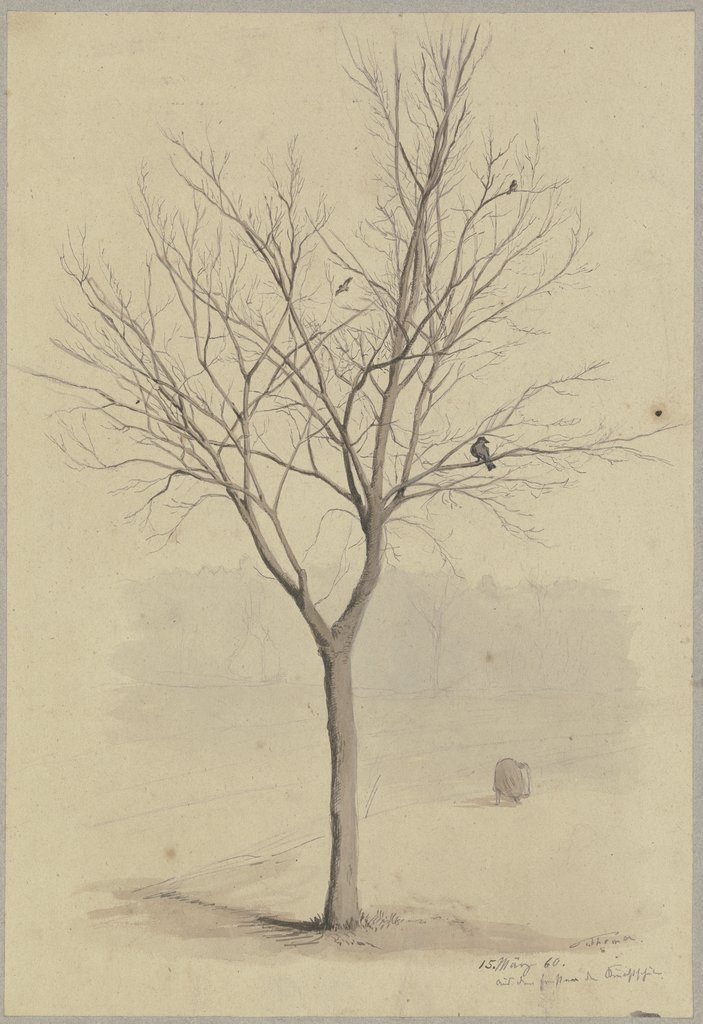Leafless tree with birds, Hans Thoma