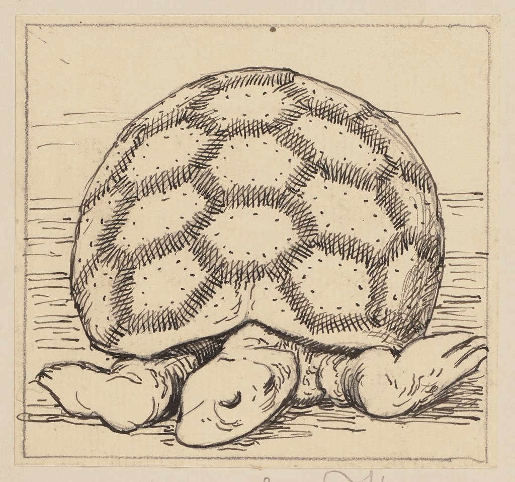 Drawing for the Primer: Tortoise, Hans Thoma
