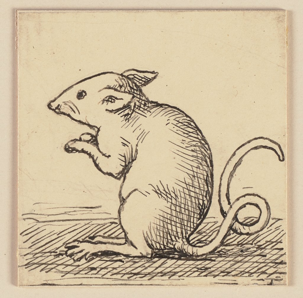 Drawing for the Primer: Mouse, Hans Thoma