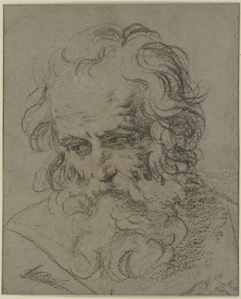 Bearded male head, Guido Reni   ?