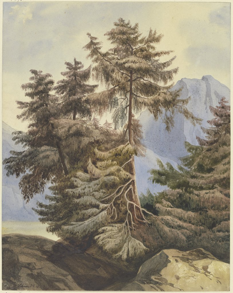 Three fir trees in the mountains, Ludwig Daniel Philipp Schmidt