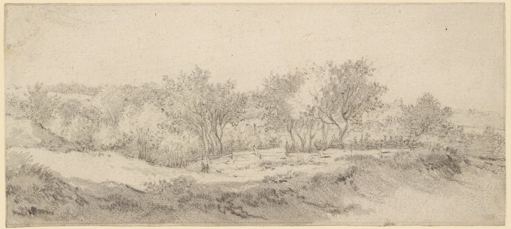 Jacob Isaacksz Van Ruisdael Digital Collection