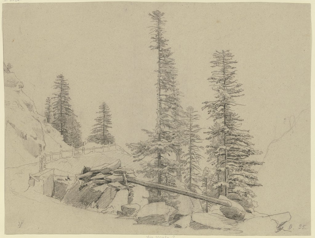 Spruce trees at the Via Mala, Johann Wilhelm Schirmer