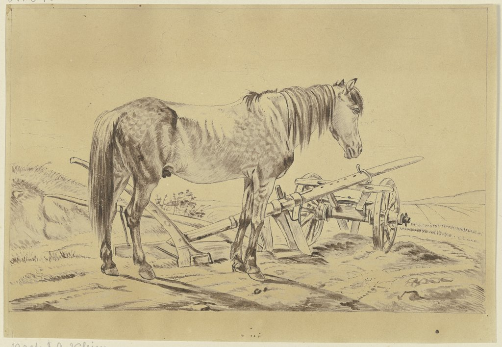 Horse with plow, Philipp Stricker, after Johann Adam Klein