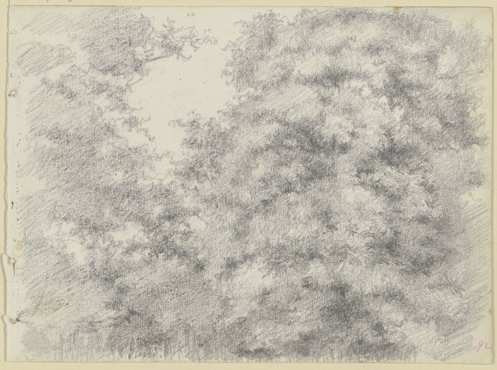 Felling of trees, Louis Eysen