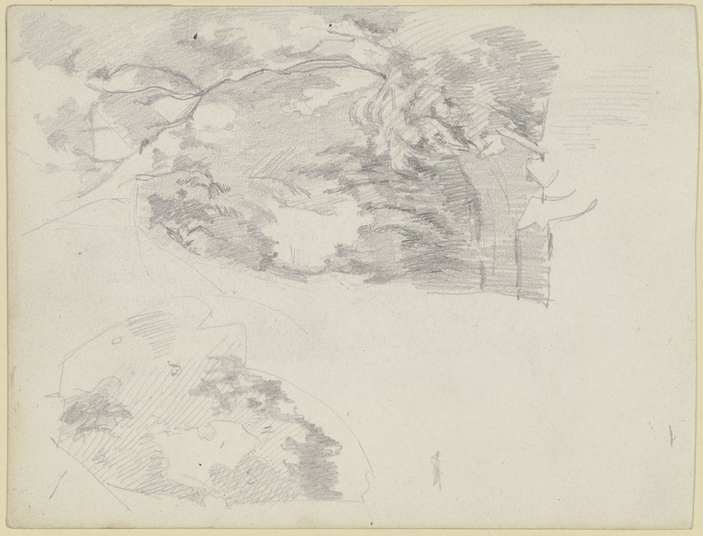 Tree sketch, Louis Eysen