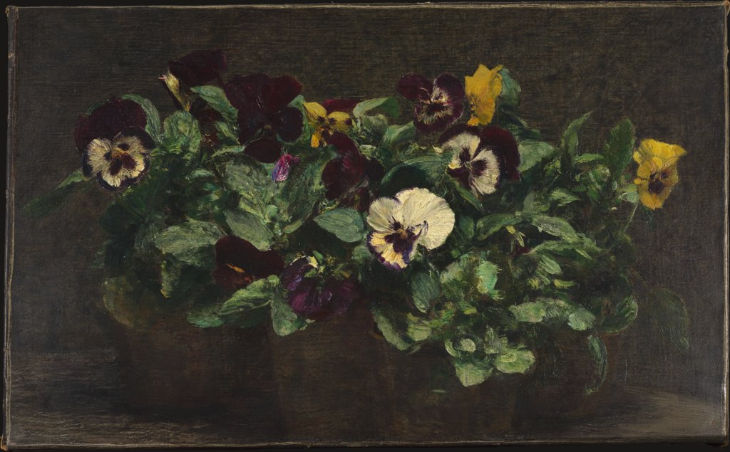 Still Life with Pansies, Henri Fantin-Latour
