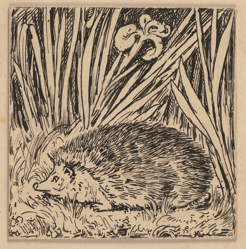 Drawing for the primer: Hedgehog, Hans Thoma