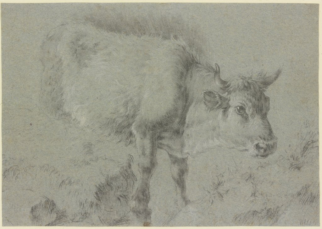 Cow to the left, Francesco Londonio