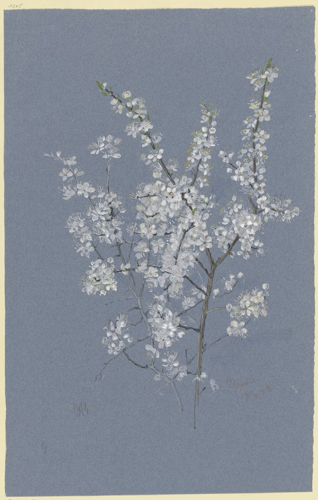 Blooming branch, Marie Paquet-Steinhausen