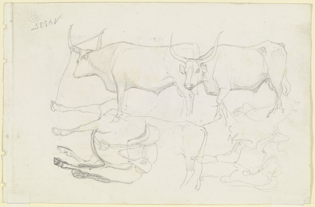 Horses and cattle, August Lucas