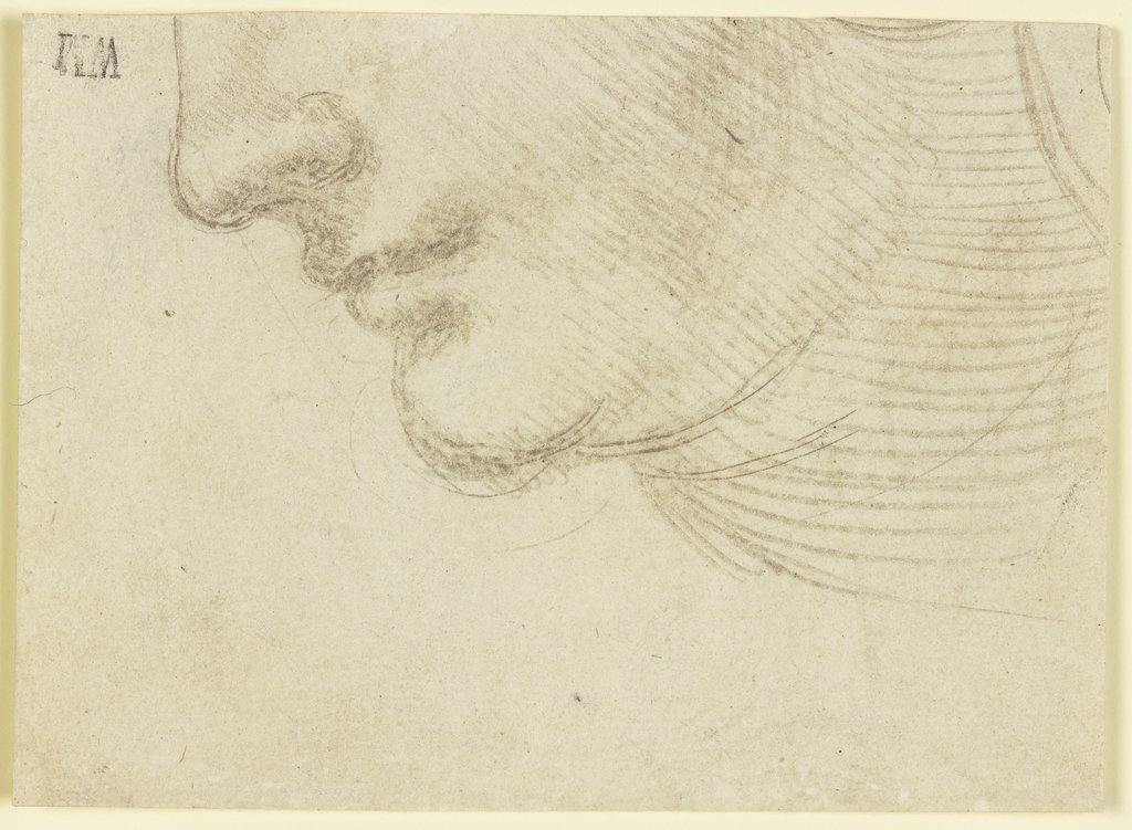 Study for the head of a woman, Unknown, 16th century