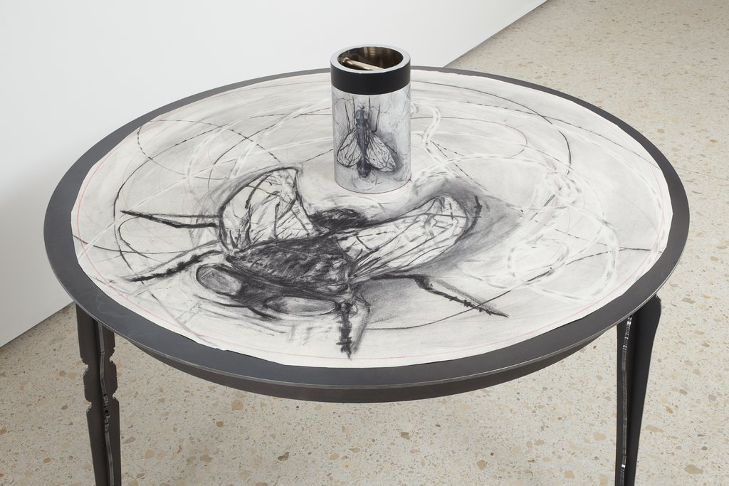 "Fly, Drawing for the Movie ""What Will Come"" with View in Cylindrical Mirror, William Kentridge"