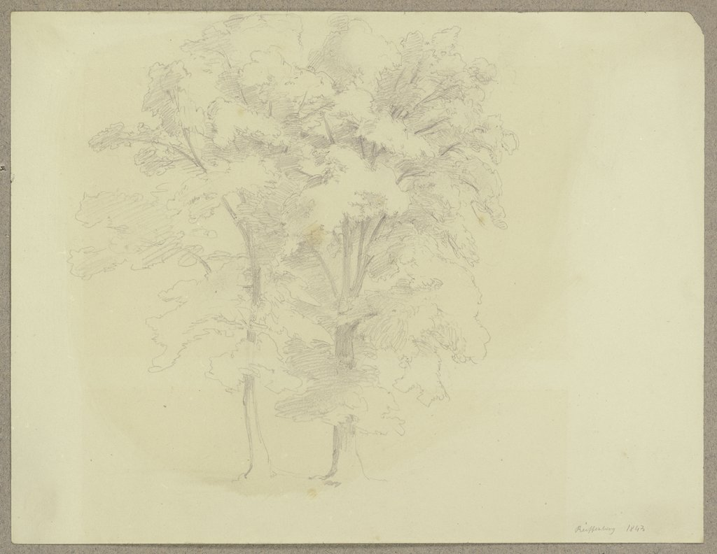 Couple of trees near Reifenberg, Carl Theodor Reiffenstein