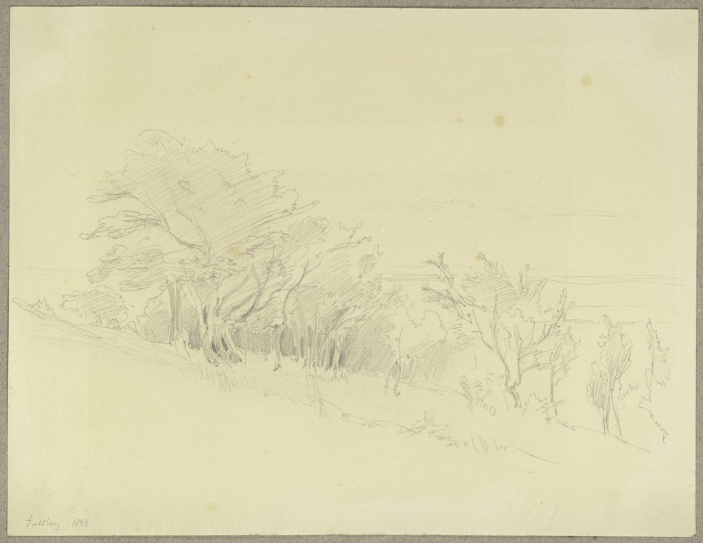 Trees at the Feldberg, Carl Theodor Reiffenstein