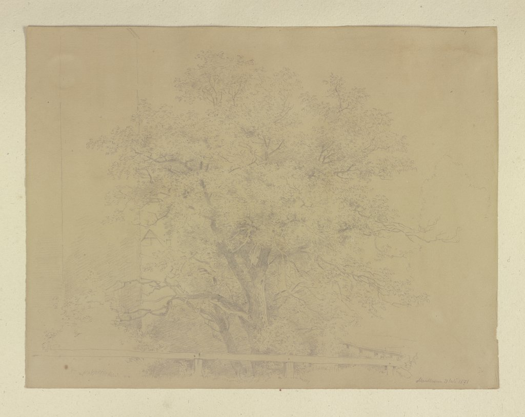Tree near Maulbronn, Carl Theodor Reiffenstein
