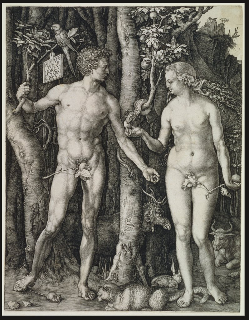 Adam and Eve (The Fall of Man), Albrecht Dürer
