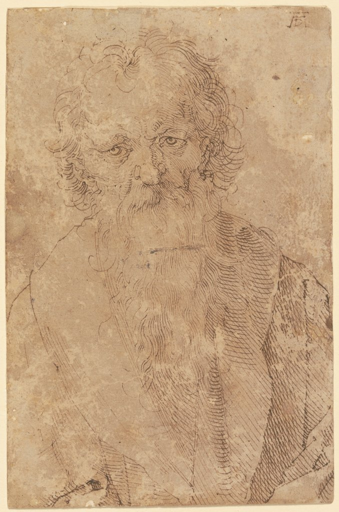 Bearded old man, Albrecht Dürer