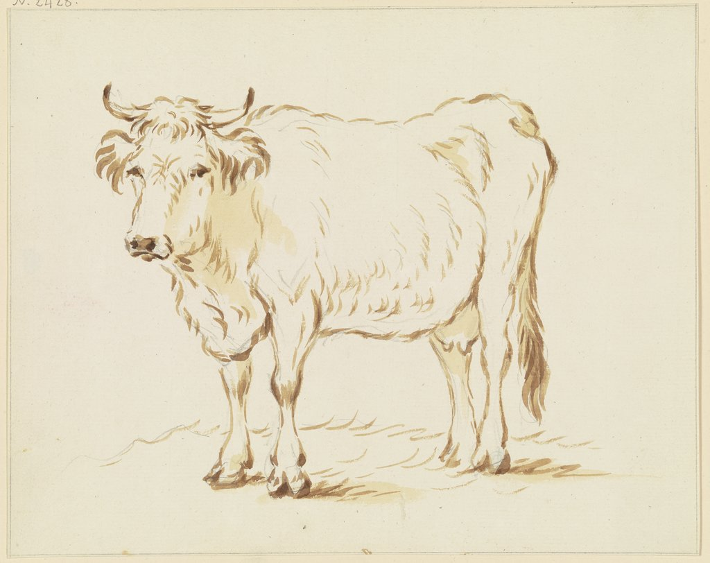 Standing cow to the left, Friedrich Wilhelm Hirt