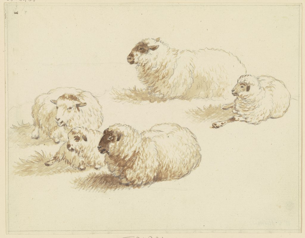 Five sheep, Friedrich Wilhelm Hirt