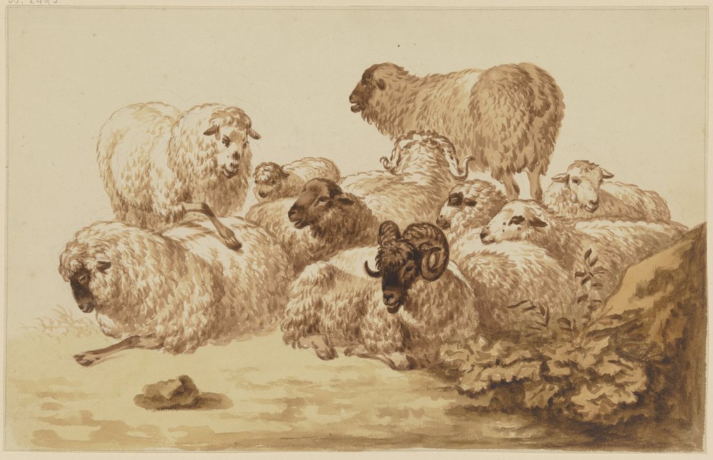 Flock of sheep, Friedrich Wilhelm Hirt