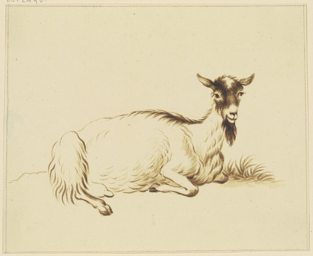 Lying goat to the right, Friedrich Wilhelm Hirt