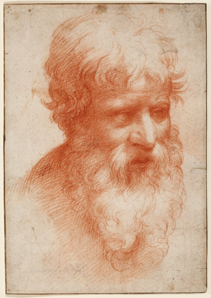 Head of a Bearded Man, looking right, Parmigianino
