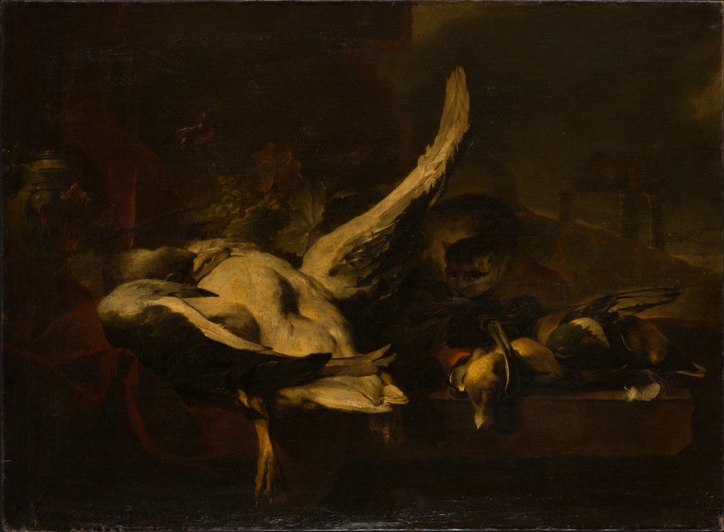 Dead Fowl Being Eaten by a Cat, Jan Baptist Weenix   attributed