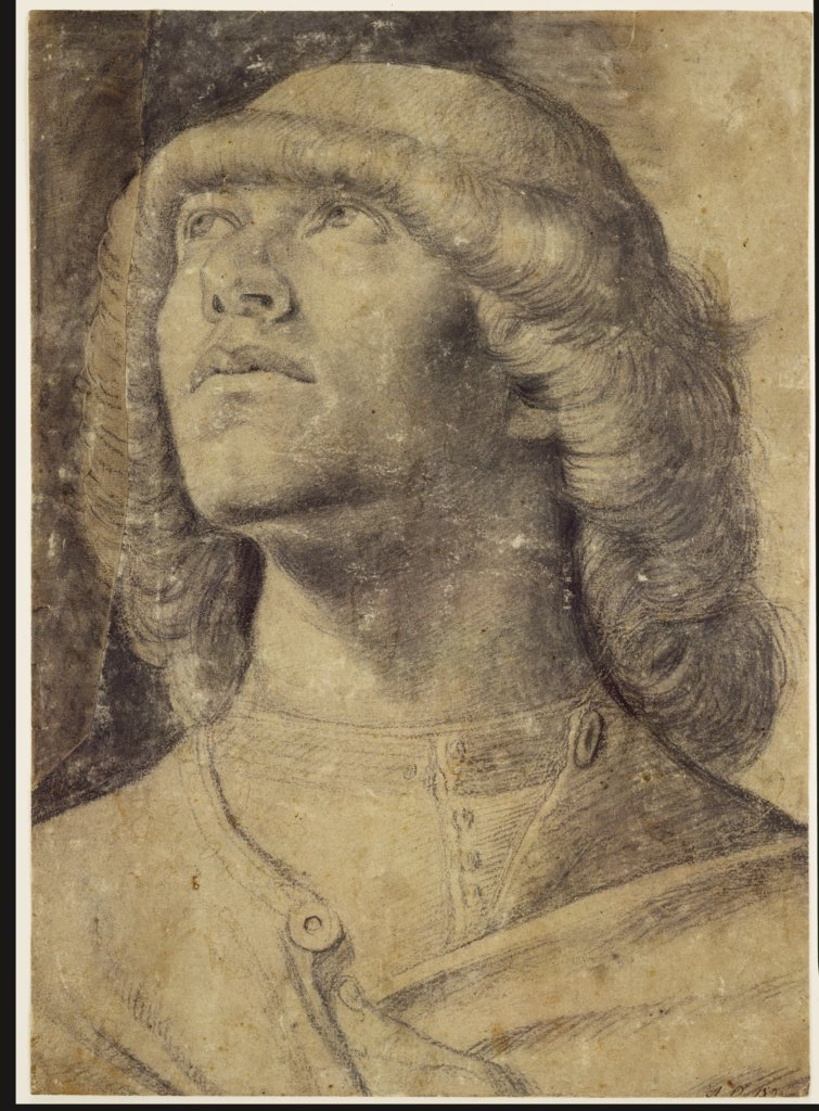 Half-length portrait of a youth looking upwards, Venetian, 15th century