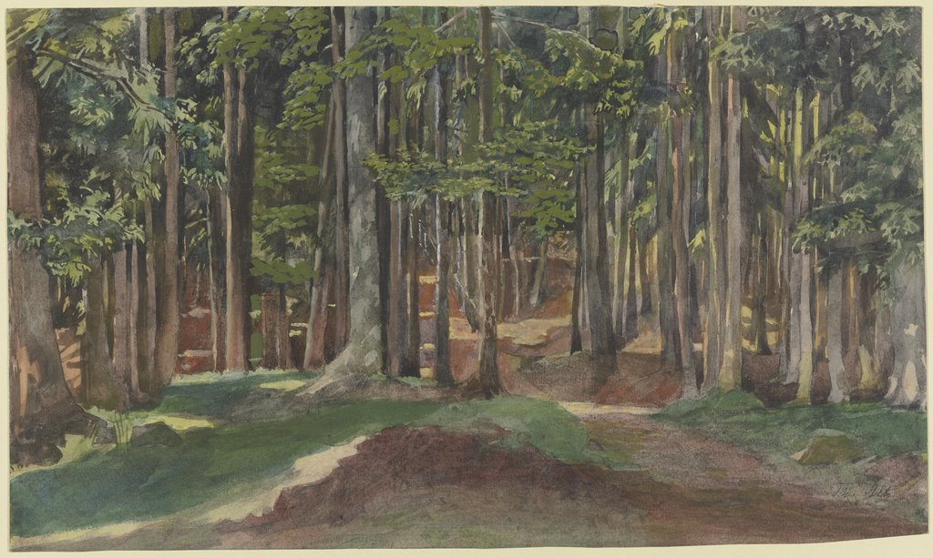 Inside a forest, Theodor Alt