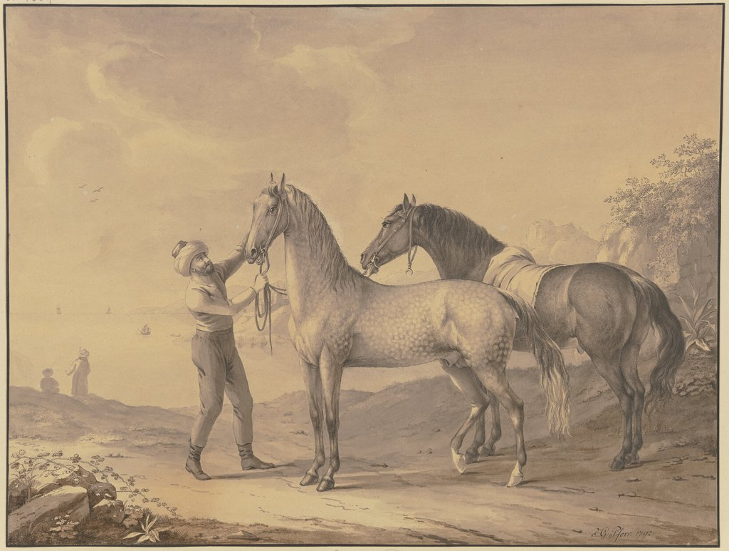 Horses from Tunis, Johann Georg Pforr