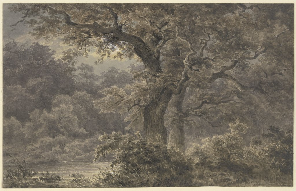 Oak trees in the forest, Johann Wilhelm Schirmer