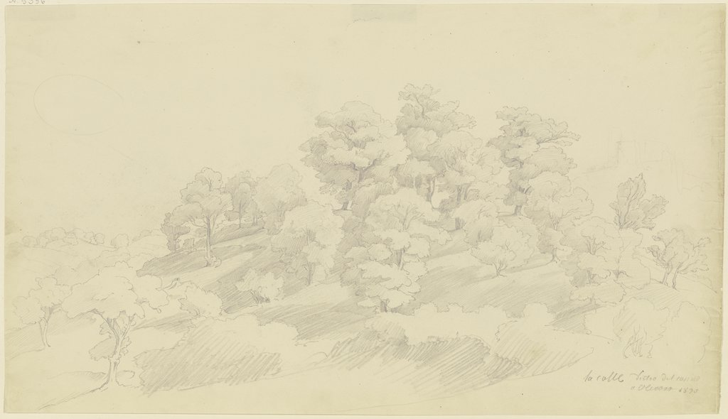 Group of trees near Olevano, August Lucas