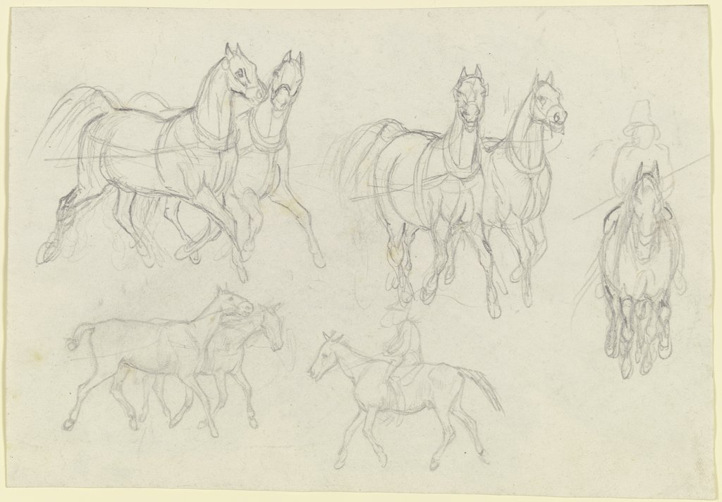 Study of horses, at a trot, August Lucas